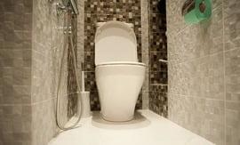 Отделка туалета плиткой - 5vodnom